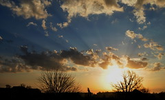 Morning new day. Lebedin. Ukraine. (ALEKSANDR RYBAK) Tags: изображения восход утро солнце солнечный свет лучи небо облака пейзаж деревья images sunrise morning sun solar shine rays sky clouds landscape trees