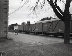 Train station (maariok1) Tags: pentax 6x7 takumar 75mm f45 lomo earl gray 100 bw film developed ddx for 9 1125 v550 scan 2400 dpi