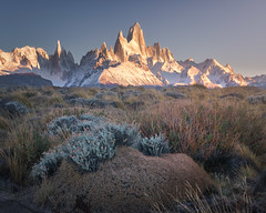 Fitz Roy and Cerro Torre in the Morning, Los Glaciares National Park, Argentina (ansharphoto) Tags: america andes argentina autumn beautiful blue canyon cerro chalten el fitz fitzroy glaciares glacier gorge granite hiking iconic landmark landscape monte morning mount mountain national nature outdoor panorama park patagonia peak range river rocks roy scenic sky snow south stream sunrise terrain torre tourism travel trek trekking view vueltas water