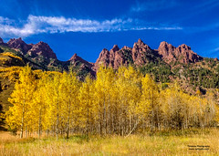 Aspens Mountains (Tom Jodis) Tags: aspens colorado fall trees seasons scenic mountains