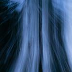 Blue movement 3 thumbnail