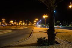 "Walking at night ("" Don Quixote "") Tags: road tree night grass tabuk ksa saudi arabia walk تبوك الليل السعودية جامعالوالدين light"