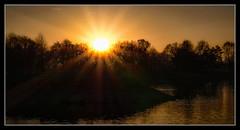 sunset near my favorite place (einfache Fotomomente) Tags: panasonic dmcg81 ƒ220 450 mm 1100 200 flairs sonnenstrahlen blendeneffekt stern sonne sonnenuntergang bäume ufer bodensee hard 45150mm