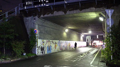 people in the city (Steve only) Tags: canon eos m2 eosm2 ef 22mm 12 stm f2 222 snap japan city night tunnel peopleinthecity