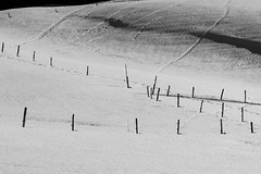 cicatrices - scars (gopillentes) Tags: neige snow blackwhite shadows ombres relief jura france franchecomté montagne mountain cold froid