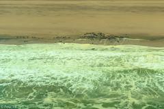_FOU7582.jpg (Murray Foubister) Tags: africa gadventures spring namibia2007 aerial desert travel 2018