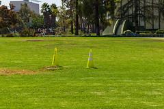 La Brea, Los Angeles 2018/9 (grimneko) Tags: anyvision california f g hancockpark l labrea labels losangeles p t usa field grass green lawn park plant tarpits tree unitedstates geo:location=centralla camera:model=canoneos7dmarkii camera:make=canon exif:lens=efs1855mmf3556isstm geo:lon=11835607166667 geo:state=california geo:city=losangeles geo:country=unitedstates exif:aperture=ƒ10 geo:lat=34063988333333 exif:model=canoneos7dmarkii exif:isospeed=100 exif:focallength=52mm exif:make=canon