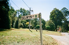 Sign - Selwyn Lane (Matthew Paul Argall) Tags: kodakflashsingleusecamera fixedfocus 35mmfilm disposablecamera singleusecamera 800isofilm kodak800 sign