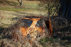 VW Käfer (mariburg) Tags: rotten marode alt old sonyalpha7ii sonyfe2470mmf4zaoss auto car vw vwkäfer