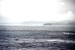 A wet and windy walk in Cambria, California (dw*c) Tags: cambria california america sea seascape usa shore ocean oceans travel trip nikon picmonkey landscape landscapes