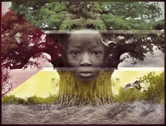Mozambique - O Espirito do Embondeiro - Help Mozambique (Daniel Arrhakis) Tags: moçambique mozambique helpmozambique tribute cicloneidai africa malawi zimbabwe storm