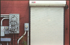 (Jeremy Whiting) Tags: royal oak mi michigan detroit red graffiti tag face door garage rolling urban alley city 35mm analog film ae1 analogue new topographics geometry street lens aberration