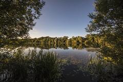 Hinchingbrooke Country Park (CraDorPhoto) Tags: canon6d landscape water lake reflection sky blue nature outdoors uk cambridgeshire trees grasses