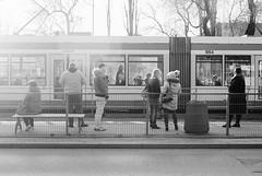 190306_000049 (Jan Jacob Trip) Tags: lodz analog film łódź poland bw people streetphotography monochrome
