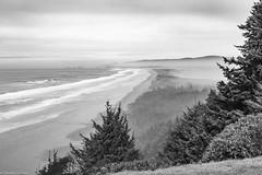 Oregon Coastline (allentimothy1947) Tags: blackandwhite oregon beach beautiful clouds coast fog haze land landscape mountains pacificocean pine sky trees water