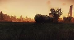 The Zone (Den7on) Tags: escape from tarkov unity bridge battlestate games grass tree