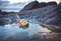 Backstroke Danbo. (Matt_Briston) Tags: robot danbo swim swimming rock pool water rusty circuit board sheringham fuji x70 matt cooper