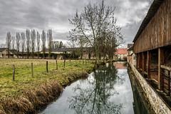 Abbaye de Citeaux (Lucille-bs) Tags: europe france bourgognefranchecomté bourgogne côtedor citeaux abbaye rivière nature paysage