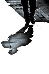 Pasamos los primeros años de la vida de nuestros hijos enseñándoles a hablar y a caminar y el resto de su vida a callarse y a sentarse. Hay algo mal en eso . (elena m.d.) Tags: sombras street siluetas contraluz elena nikon d5600 sigma sigma105 guadalajara monocromo arte texturas