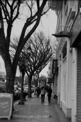 Street Scene: Whyte Avenue (Pics from the Bird Cage) Tags: argentique leica leicaiiic hp5 film ilfordhp5plus400 35mm alberta ishootfilm leica3c ilfordhp5plus ilfosol3 edmonton edmontonalberta blackandwhite blackwhite summitar summitar5cmf20 barnack whyteavenue analog analogue bulkfilm classiccamera camera monochrome iso iso400 streetphotography strathcona outdoors