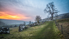 Sunset over the land. (Lee Harris Photography) Tags: landscape sunset countryside yorkshire outdoor colours colourful wall fence tree sky orange cloud path contrast lens lumixg9 hill beauty scenics uk grass