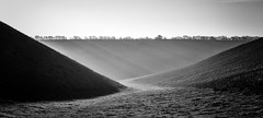Holm Dale (l4ts) Tags: landscape yorkshire eastriding yorkshirewolds fridaythorpe holmdale dryvalley chalk headwarderosion contrejour goldenhour sunrise blackwhite monochrome crepuscularrays