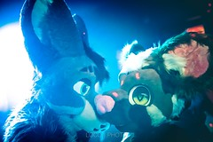 8M5A4356-17 (loboloc0) Tags: furries frolicparty frolic party furry club dance suit suiter fur fursuit dj sf san francisco indoor people costume performer animal blur portrait