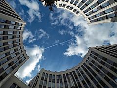Blick in den Himmel - Was siehst Du (magritknapp) Tags: stresemannstraseeckeköthnerstrase häuser himmel wolken baum kondenzstreifen sky clouds tree condensationstripes olympusmzuikodigital918mmedf40‑56