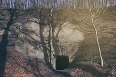 Wolfsschluchthöhle (Wolf-Canyon Cave) (SurfacePics) Tags: wolfsschlucht wolfsschluchthöhle dehme portawestfalica landkreismindenlübbecke nrw nordrheinwestfalen northrhinewestphalia nordwesten deutschland germany europe europa wald wiehengebirge forest bäume baum januar 2019 outdoor surfacepics amazing stunning landscape landschaft eingang entrance fels felswand sonyalpha77ii sonyalpha sony photo foto fotografie photography loch hole holes sandsteinbruch sandstone sandstein instagram instalike sunny exploring hiking ausflug