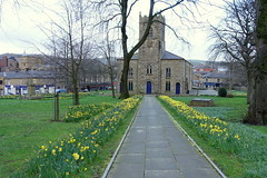 Accrington St James Church (Tony Worrall) Tags: update place location uk england visit area attraction open stream tour country item greatbritain britain english british gb capture buy stock sell sale outside outdoors caught photo shoot shot picture captured ilobsterit instragram town accrington line path church daffs spring yellow green walkway accringtonstjameschurch st james