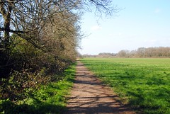 Hamsey Green fields (zawtowers) Tags: london loop section 5 five hamseygreentocoulsdonsouth walk amble stroll walking exploring outer suburbs green spaces sunday 24th march 2019 warm dry sunny afternoon blue skies sunshine hamsey fields tithebarn shaw lane