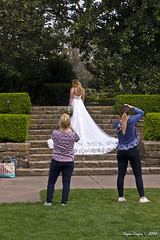 IMG_5622 (Roger Kiefer) Tags: dallas arboretum outdoors beauty nature wedding dress