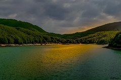 On Golden Pond (danilocolombo69) Tags: lago lagastrello raggi oro alberi danilocolombo danilocolombo69 nikonclubit natureinfocusgroup