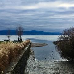 Embouchure de la Paudèze (Iris_14) Tags: léman vaud romandie lacléman pully paudex paudèze hiver rivière embouchure