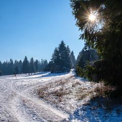 Winter auf der Fuchskaute (Bluespete) Tags: schnee xseries xt3 psifotografie winter landschaft landscape fuchskaute westerwald kalt frostig psi wald fujifilm cold willingen rheinlandpfalz deutschland de