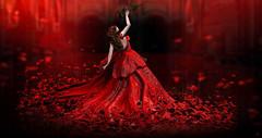 Raise the rose to touch the Love (meriluu17) Tags: petal lpve rose roses petals red passion passionate moonamore cupidinc romance romantic romantical raise singlerose hold light people fantasy surreal lode