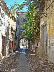 Arco do Bispo em Castelo Branco 01 (Sofia Barão) Tags: castelo branco beira baixa portugal