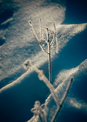 A Part Of It Is Me (davelawrence8) Tags: 2015 albion commute frost michigan snow sunrise winter usa