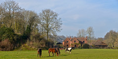 SEVERN VALLEY COUNTRY (chris .p) Tags: nikon d610 view country highley shropshire winter 2019 house farm february landscape england trees tree