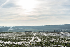 A February Winter Day 2019 II (boettcher.photography) Tags: schnee snow februar february winter 2019 dilsberg neckargemünd rheinneckarkreis kurpfalz badenwürttemberg deutschland germany sashahasha boettcherphotography boettcherphotos sky himmel wolken clouds landscape landschaft