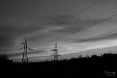 Elektrische Fernleitungen (ucrainis) Tags: powerline line black white monochrome bw power evening nature urban