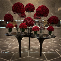 Flowers (Anthony Warmuth) Tags: delhi india jwmarriott