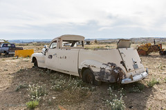 Another shot of this odd beauty in the Terlingua Texas desert