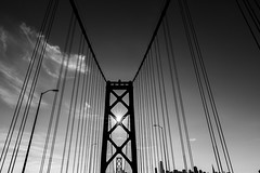 _DSC0088 (a bit of everything) Tags: sanfrancisco blackandwhite baybridge sunstar bridge sony sun