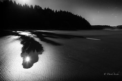 Moon bounce (D. Inscho) Tags: lapush pacific ocean water pacificnorthwest reflection night moonlight silhouette washington sand stars beach