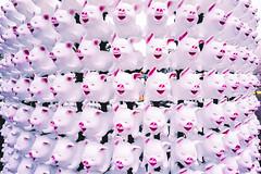 Year of the Pig (Leighton Wallis) Tags: sony alpha a7r mirrorless ilce7r 55mm f18 emount sydney circularquay therocks nsw newsouthwales australia chinesenewyear china pig yearofthepig lunarnewyear