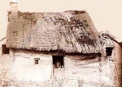 Les Loges 1889