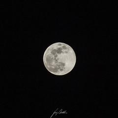 Snow moon, 19/02/2019 (Lumase) Tags: snowmoon fullmoon astronomy astrophotography supermoon