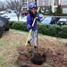 Ayrsley_Tree_Planting_2019_ (58)