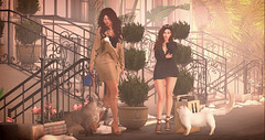 Day out shopping (Stefania Giano) Tags: zodiac gingerfish ison doux glamaffair empire